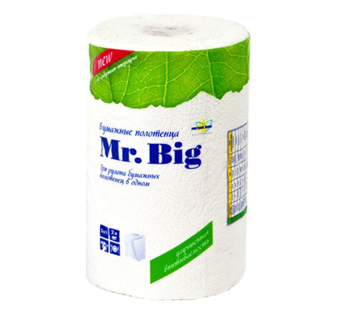 Полотенца бумажные Мягкий знак Mr. Big, двухслойные, цвет: белый, 1 рулонC5Бумажные полотенца Мягкий знак Mr. Big, созданы из экологически чистого волокна - 100% целлюлозы. Высочайшего качества материал обеспечивает отличную впитываемость. Объемное тиснение не только придает изысканность, делает полотенце приятным на ощупь, но и скрепляет слои.Идеально подходят для ежедневного использования. Один рулон бумажных полотенец Мягкий знак Mr. Big равен трем стандартным рулонам.Количество листов: 130 шт. Количество слоев: 2. Размер листа: 25 х 23 см. Состав: 100% целлюлоза.