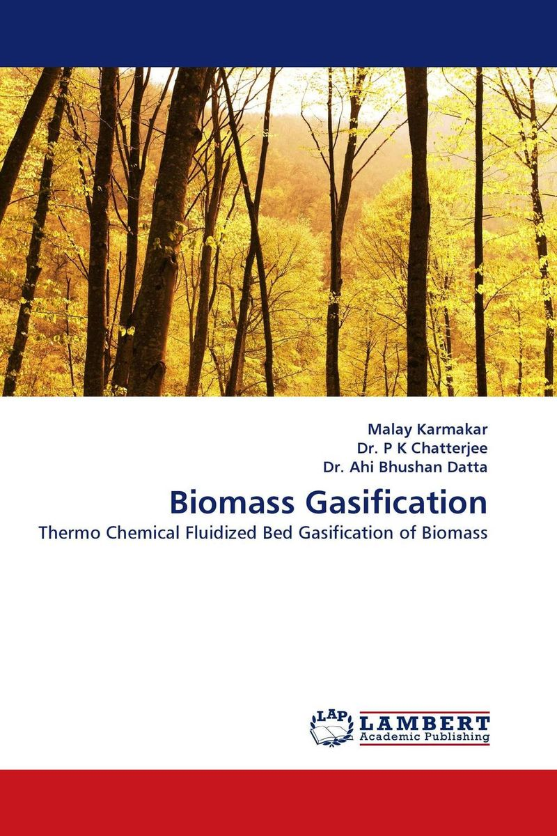 Biomass Gasification hydrogen production through combined pyrolysis and steam gasification