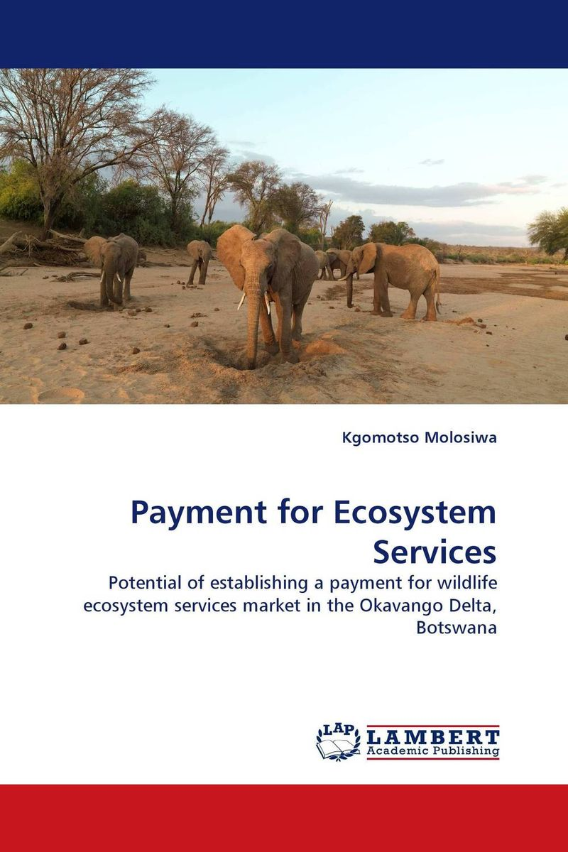 Payment for Ecosystem Services driven to distraction