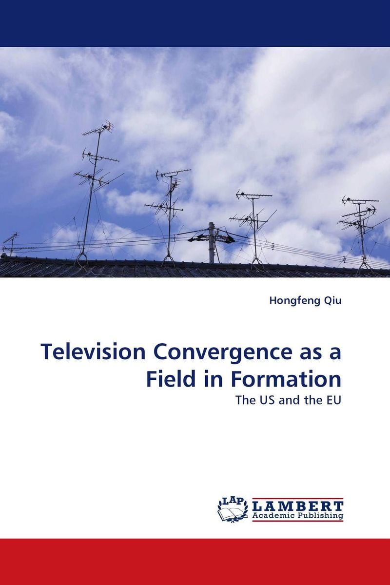 Television Convergence as a Field in Formation the viabilities of musyarakah as social protection mechanism