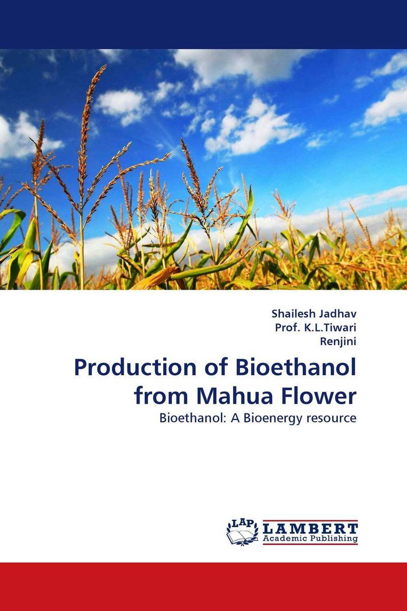 Production of Bioethanol from Mahua Flower недорго, оригинальная цена