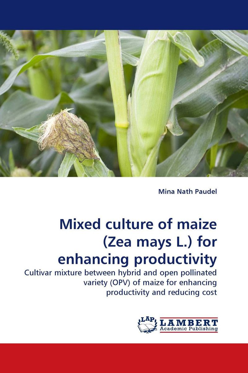 Mixed culture of maize (Zea mays L.) for enhancing productivity