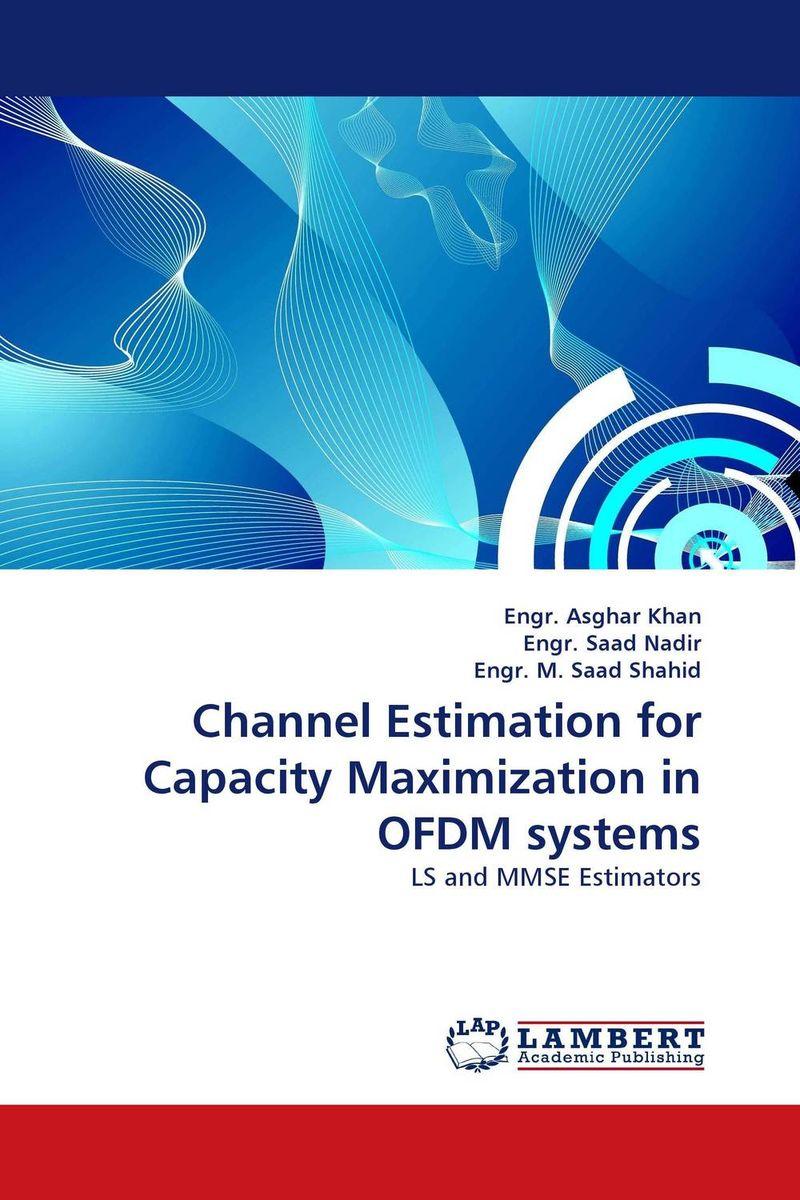 купить Channel Estimation for Capacity Maximization in OFDM systems недорого
