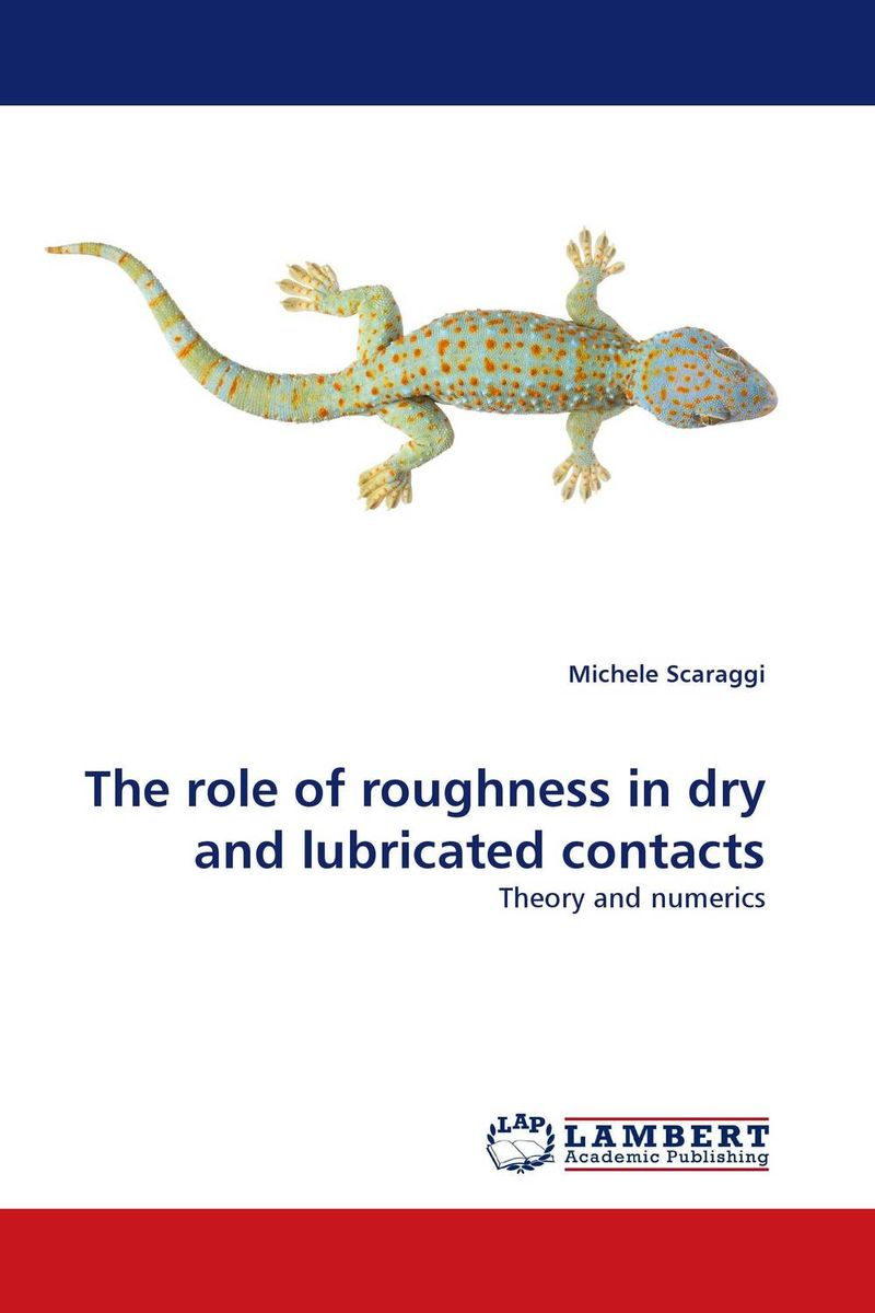 The role of roughness in dry and lubricated contacts the role of evaluation as a mechanism for advancing principal practice