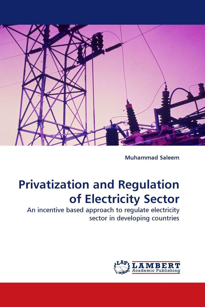Privatization and Regulation of Electricity Sector crafting a more successful privatization policy