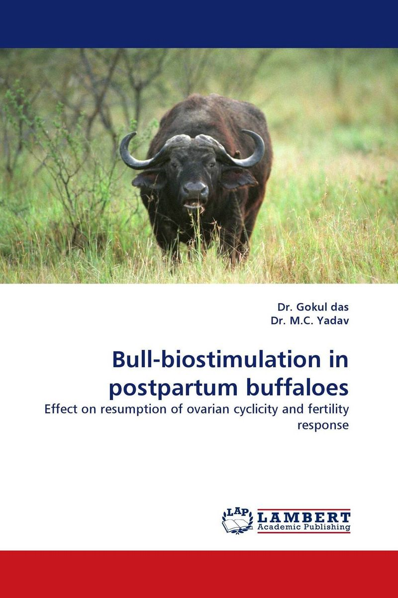 Bull-biostimulation in postpartum buffaloes bull biostimulation in postpartum buffaloes