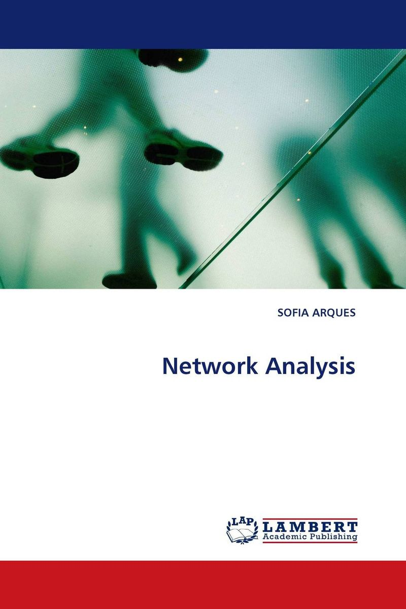Network Analysis honey value chain analysis