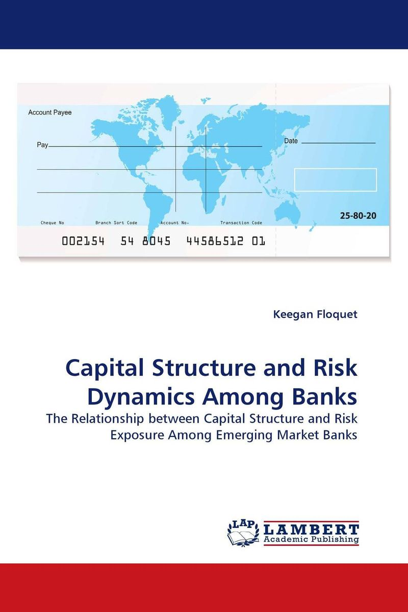 Capital Structure and Risk Dynamics Among Banks capital structure and risk dynamics among banks