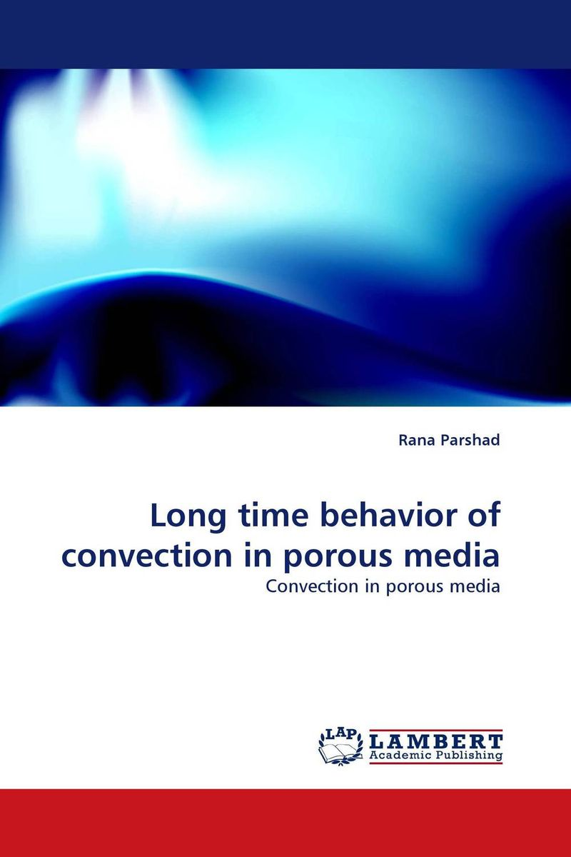 Long time behavior of convection in porous media particle mixing and settling in reservoirs under natural convection