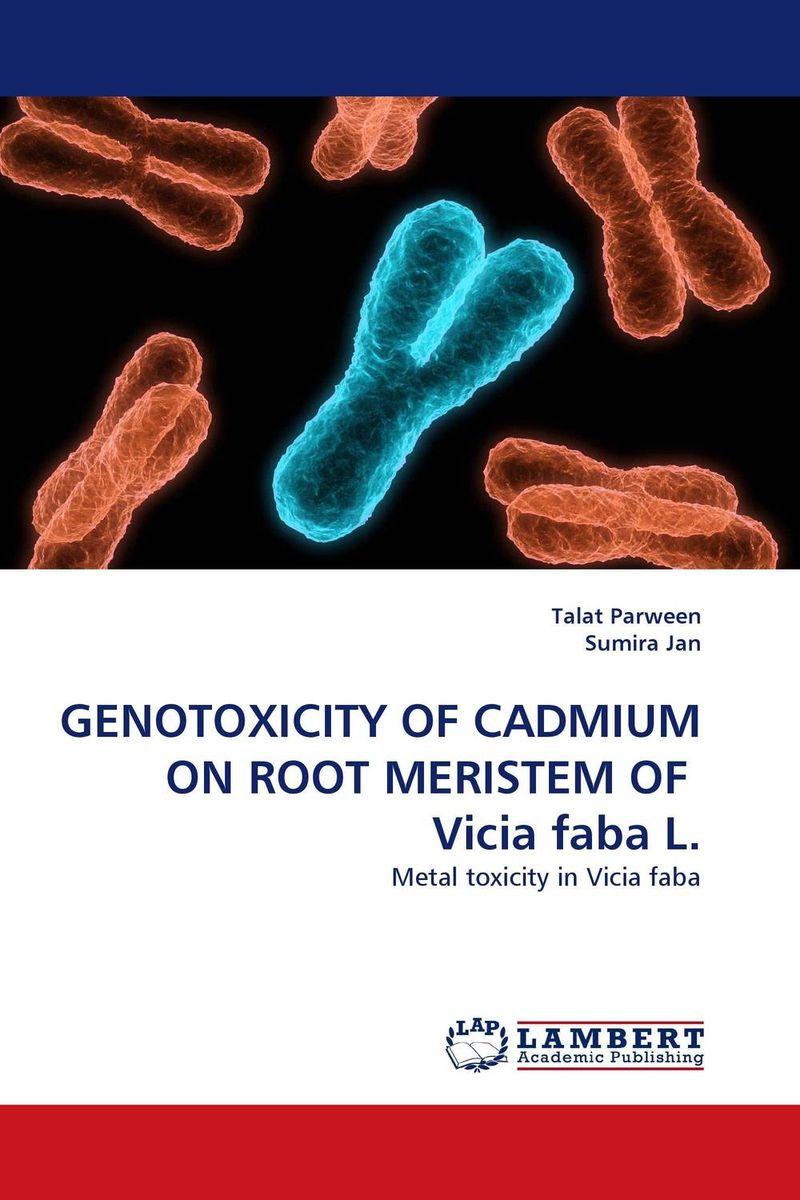 GENOTOXICITY OF CADMIUM ON ROOT MERISTEM OF  Vicia faba L. krishnendra singh nama kiran choudhary and hari mohan meena microbial association of root nodules of vicia faba l kota rajasthan