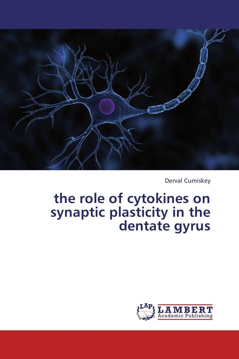the role of cytokines on synaptic plasticity in the dentate gyrus