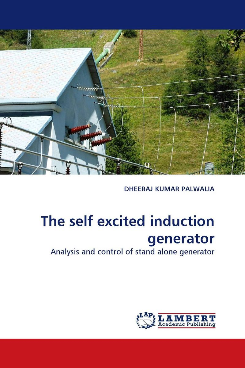 The self excited induction generator