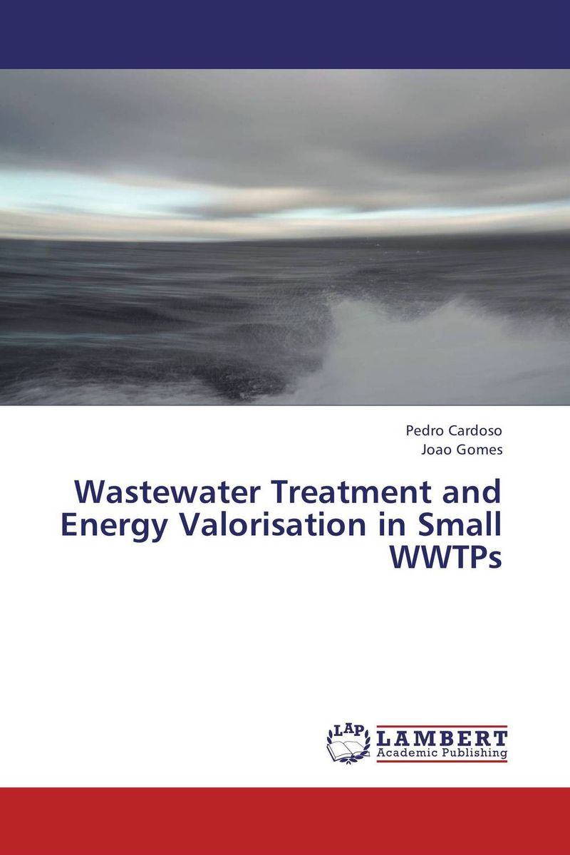 Wastewater Treatment and Energy Valorisation in Small WWTPs цена