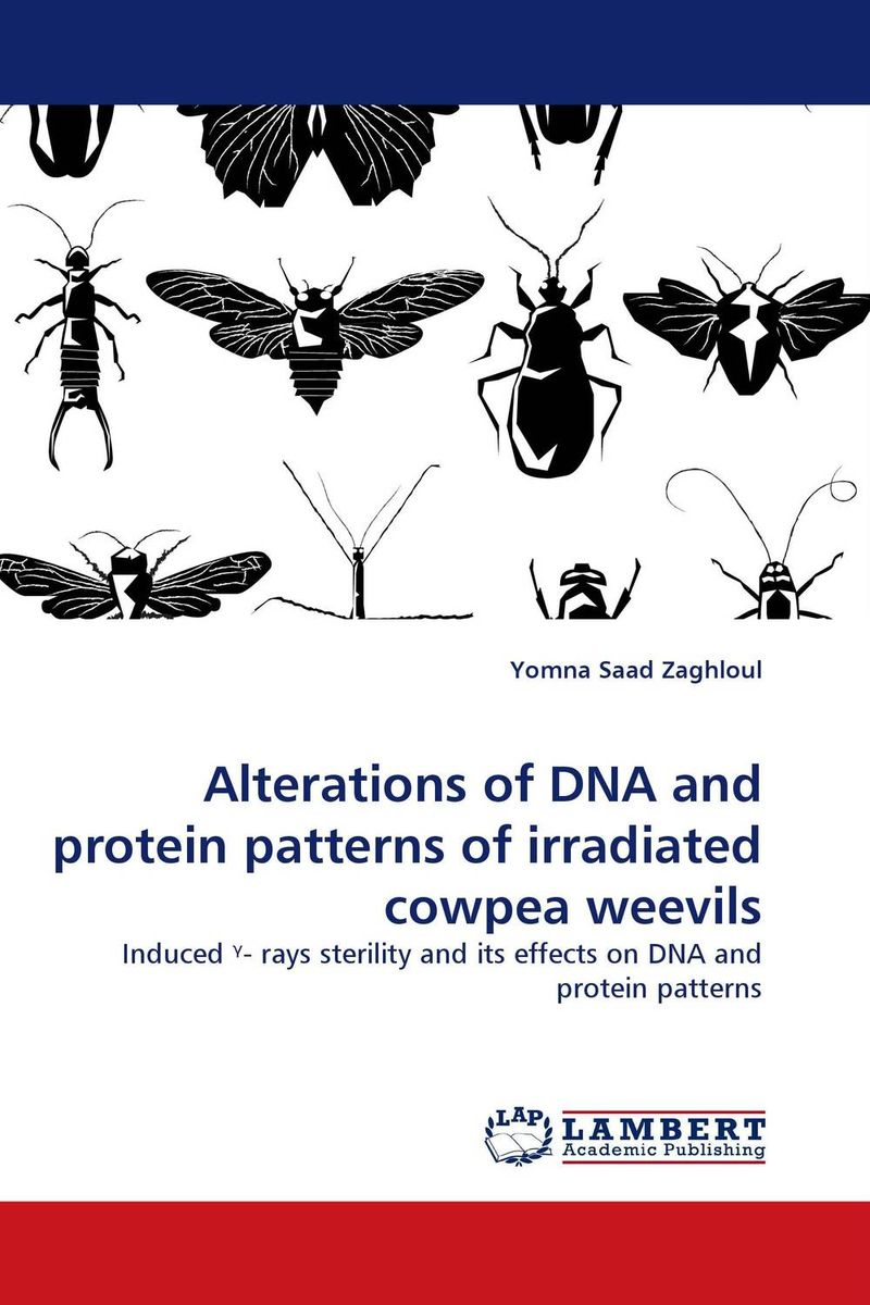 Alterations of DNA and protein patterns of irradiated cowpea weevils solitons in dna and biological implications