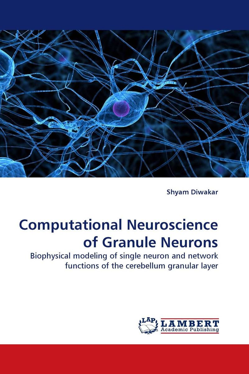 Computational Neuroscience of Granule Neurons web personalization models using computational intelligence