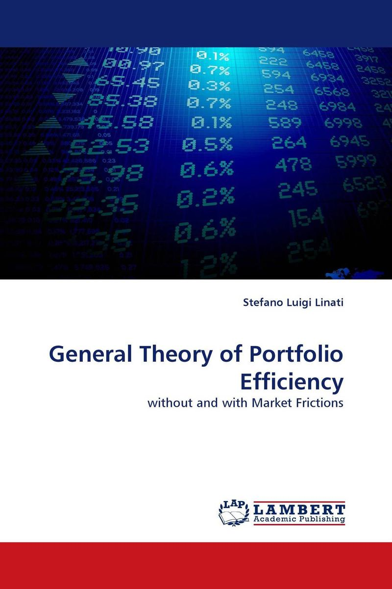 General Theory of Portfolio Efficiency capital asset pricing model