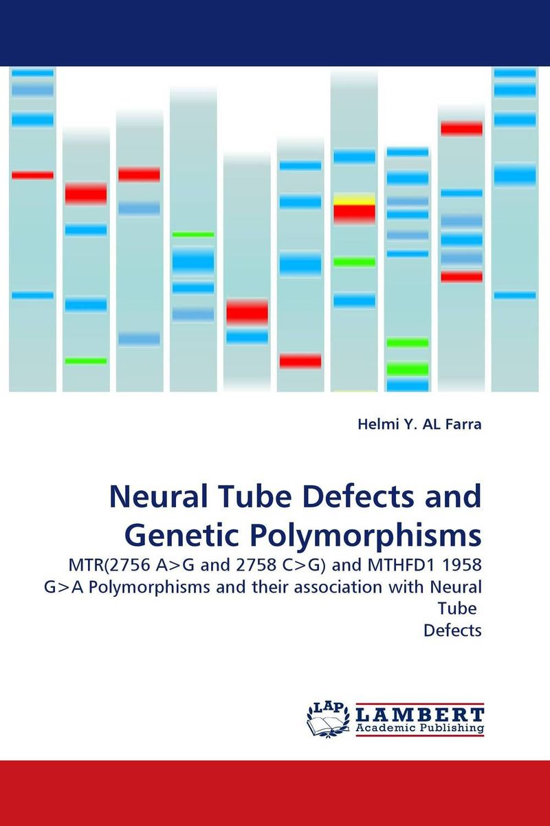 Neural Tube Defects and Genetic Polymorphisms methionine supplementation alters beta amyloid levels in brain cells