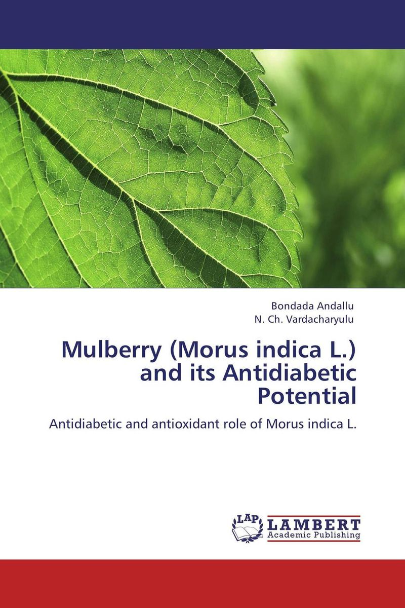 Mulberry (Morus indica L.) and its Antidiabetic Potential mulberry leaf extract powder natural mulberry leaves p e 10 1 health care herbal dietary supplements
