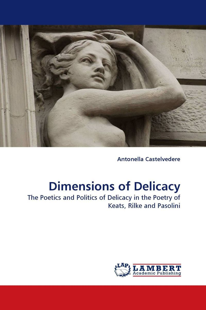 Dimensions of Delicacy duncan bruce the dream cafe lessons in the art of radical innovation