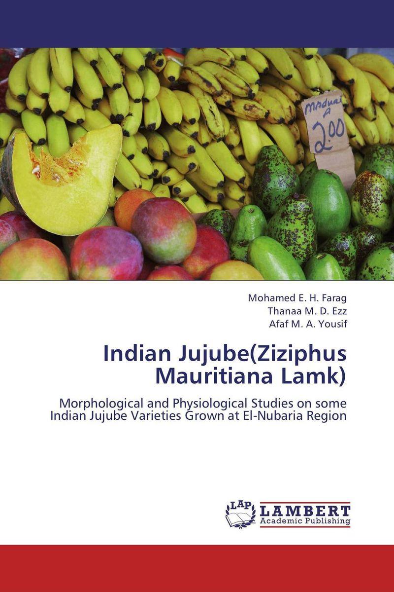 Indian Jujube(Ziziphus Mauritiana Lamk) jintang aaaaa sweet jujube 250g bag red jujube heath food