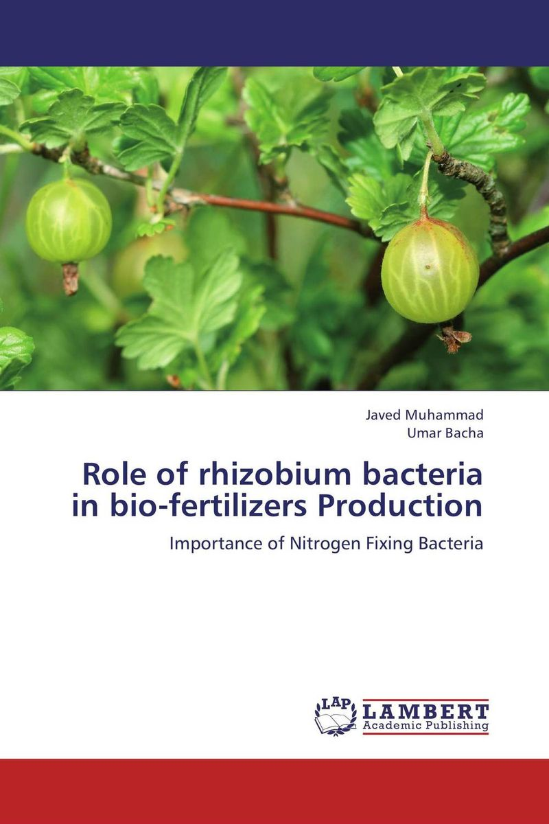 Role of rhizobium bacteria in bio-fertilizers Production role of bacillus circulans in bio organic agriculture