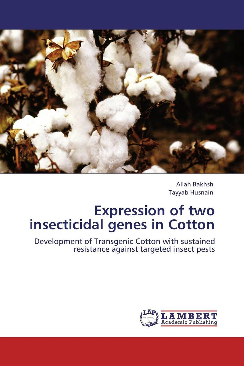Expression of two insecticidal genes in Cotton improved expression of bacterial chia in plant by codon optimisation