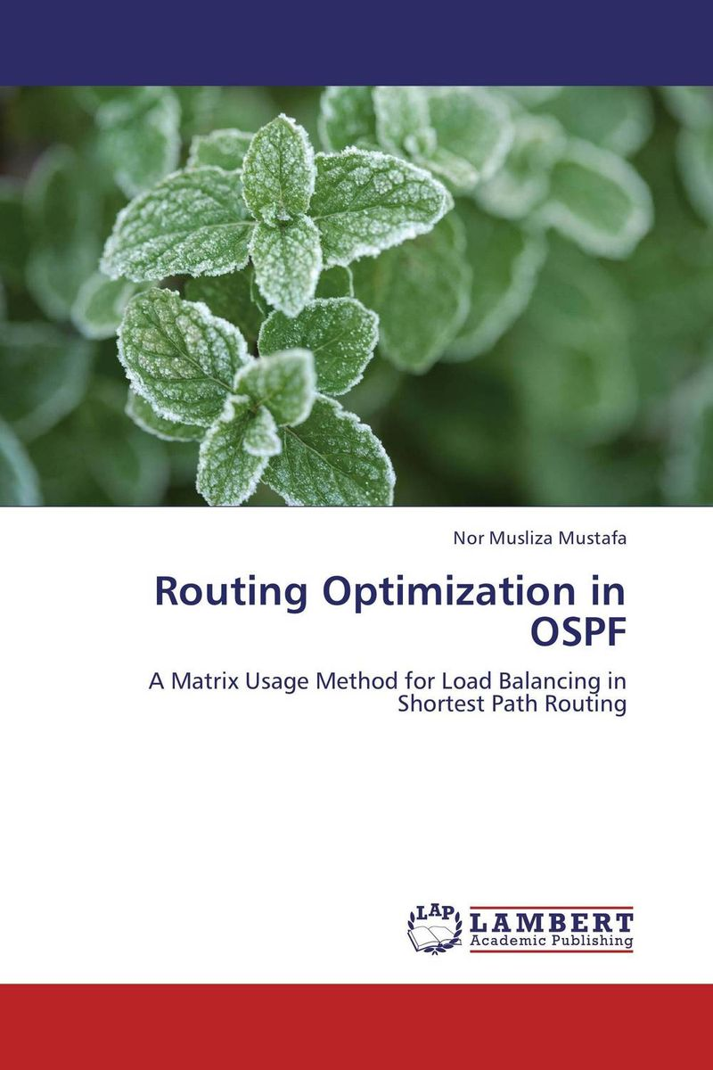 Routing Optimization in OSPF practical global optimization computing methods in molecular modelling