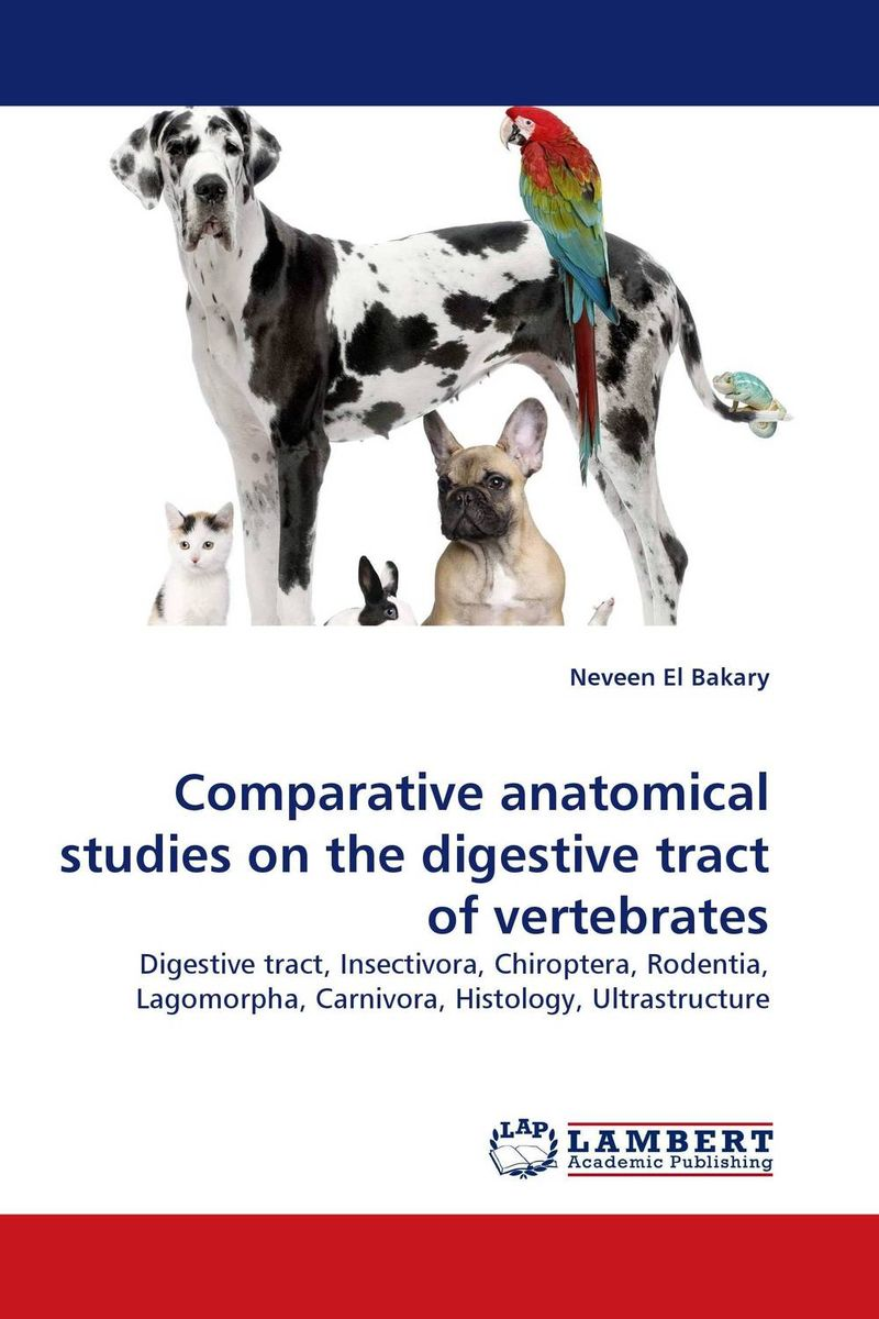 Comparative anatomical studies on the digestive tract of vertebrates anatomical studies on species of subfamily stachyoideae lamiaceae