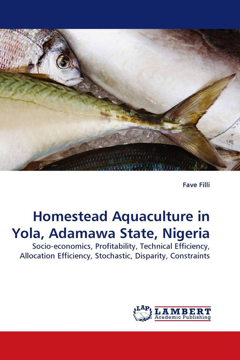 Homestead Aquaculture in Yola, Adamawa State, Nigeria homestead kitchen