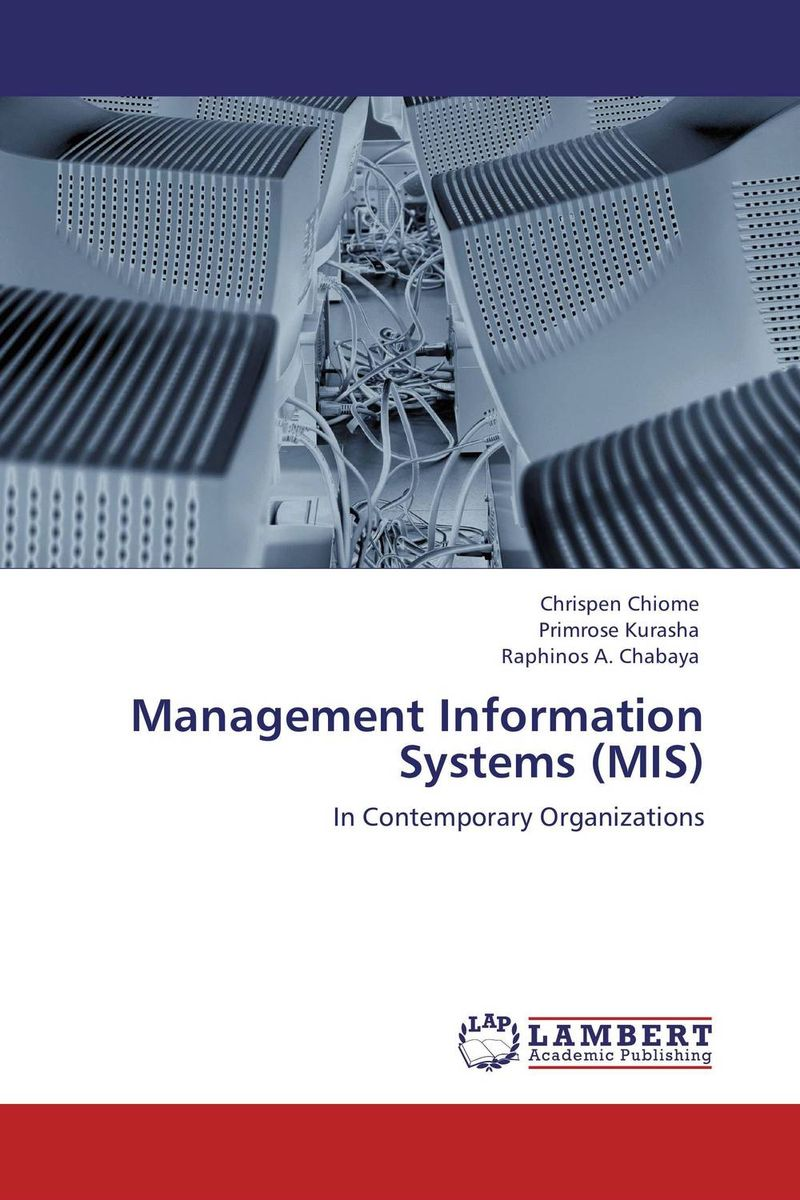 Management Information Systems (MIS) critical information assets disaster management audit model