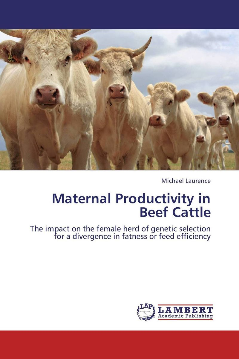 Maternal Productivity in Beef Cattle alganesh tola gemechu distance module on beef cattle production and management