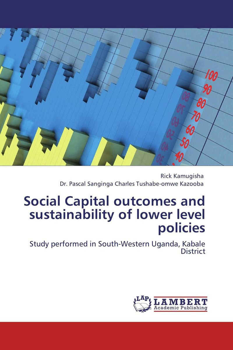 Social Capital outcomes and sustainability of lower level   policies i manev social capital and strategy effectiveness an empirical study of entrepreneurial ventures in a transition economy