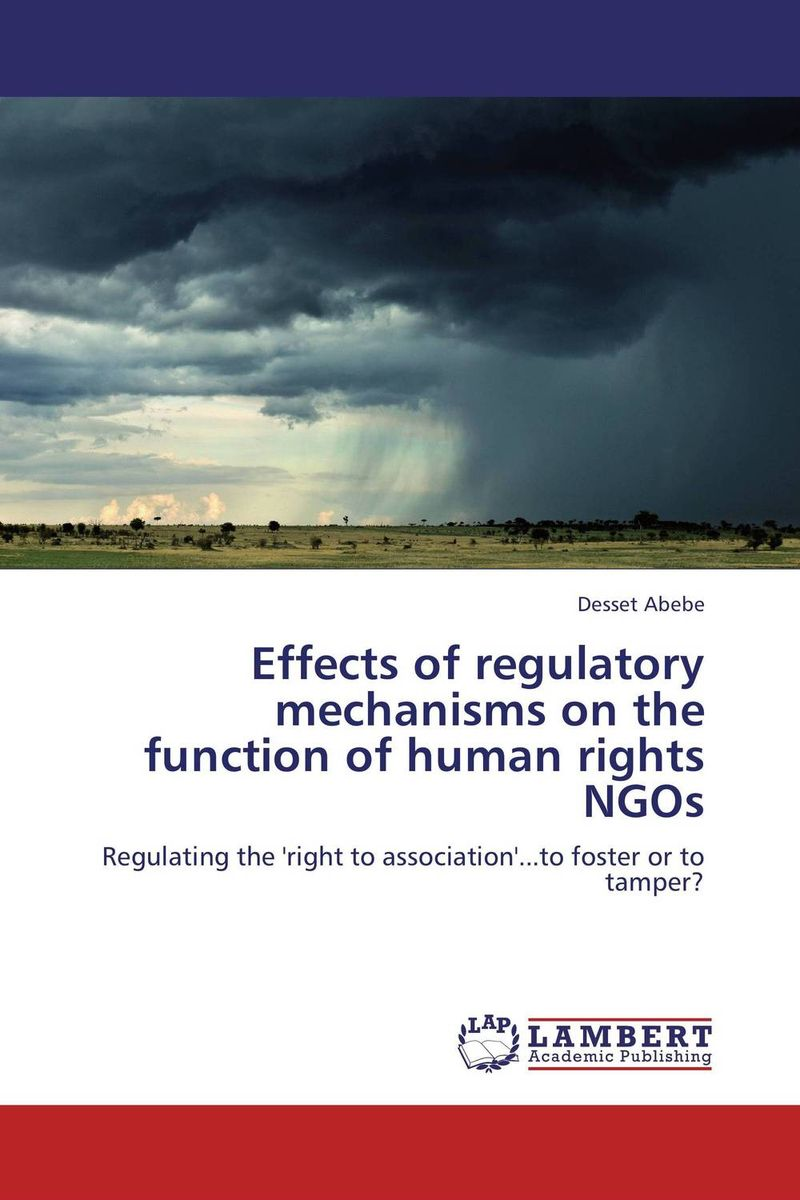 Effects of regulatory mechanisms on the function of human rights NGOs ngos
