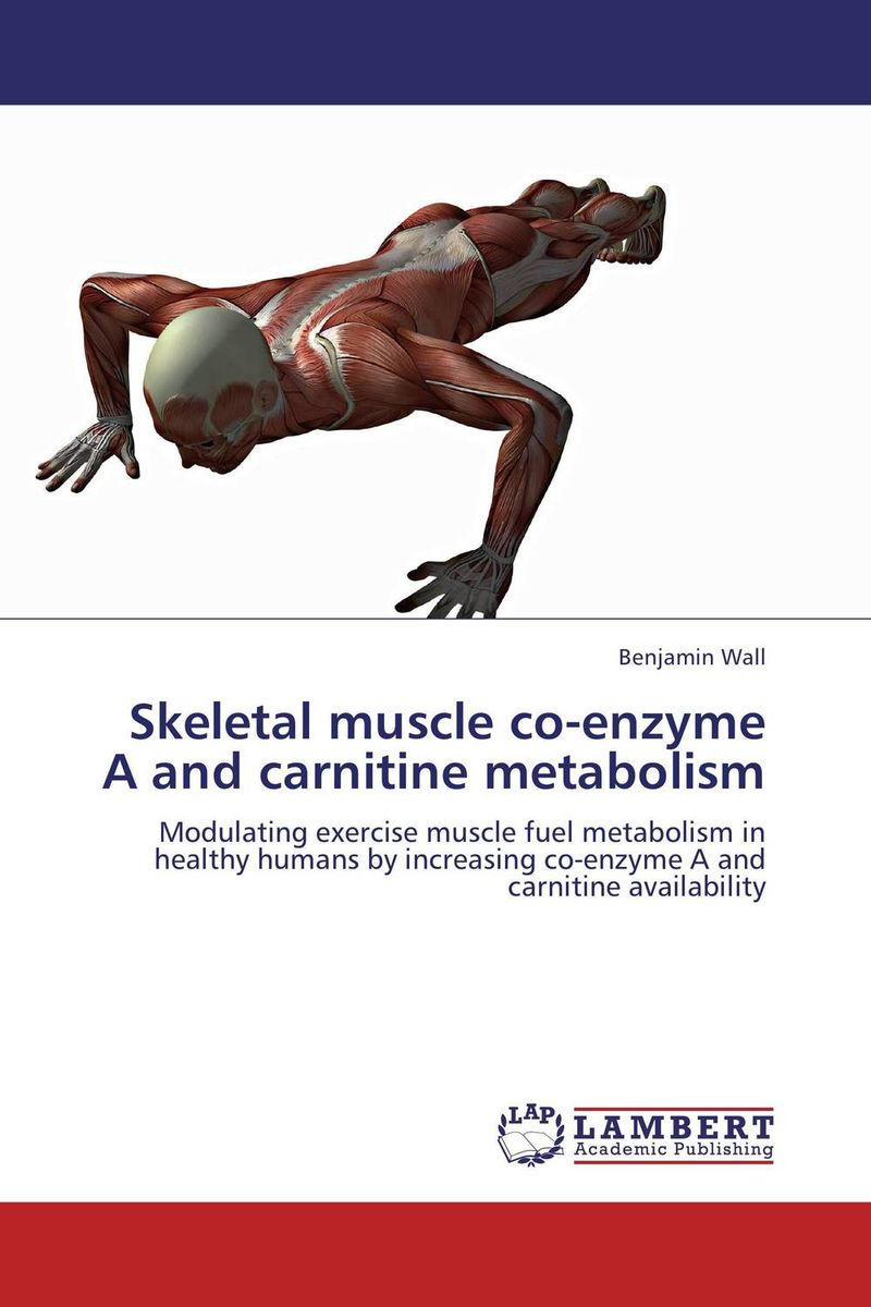 Skeletal muscle co-enzyme A and carnitine metabolism transition period in cows nutrition metabolism and metabolic disease