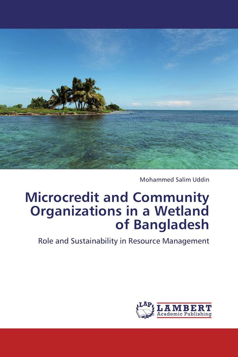 Microcredit and Community Organizations in a Wetland of Bangladesh 2s 6s parallel balanced charging plate for rc airplane helicopter