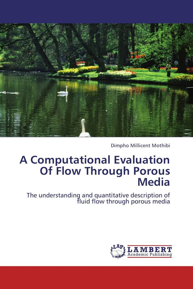 A Computational Evaluation Of Flow Through Porous Media michael s landy computational models of visual processing