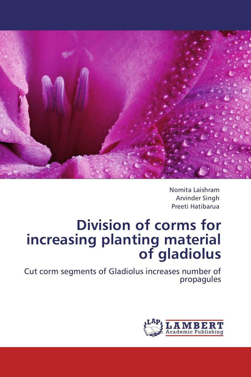 Division of corms for increasing planting material of gladiolus
