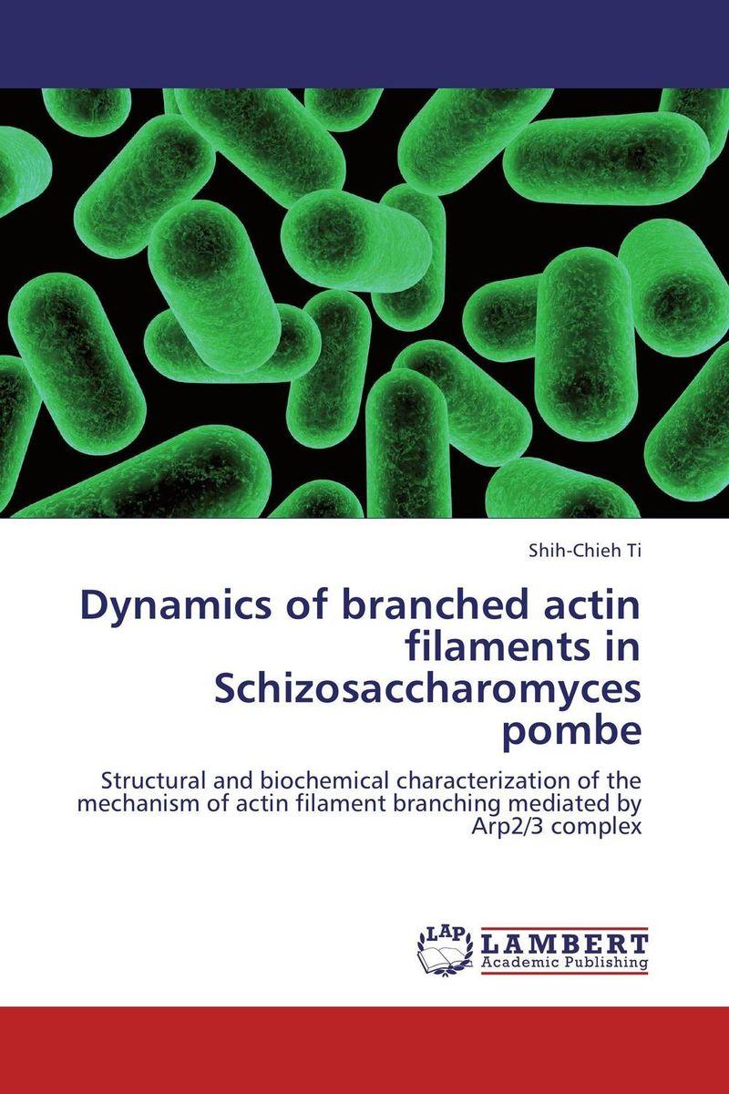 Dynamics of branched actin filaments in Schizosaccharomyces pombe glucose powder 500 grams of creatine supplements tribulus adjust taste movement branched arginine glucosamine good partner
