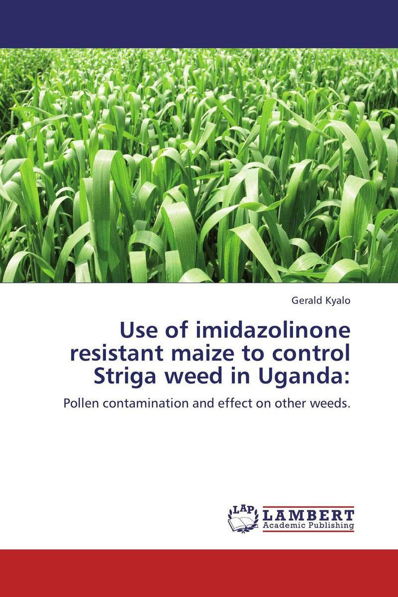 Use of imidazolinone resistant maize to control Striga weed in Uganda: