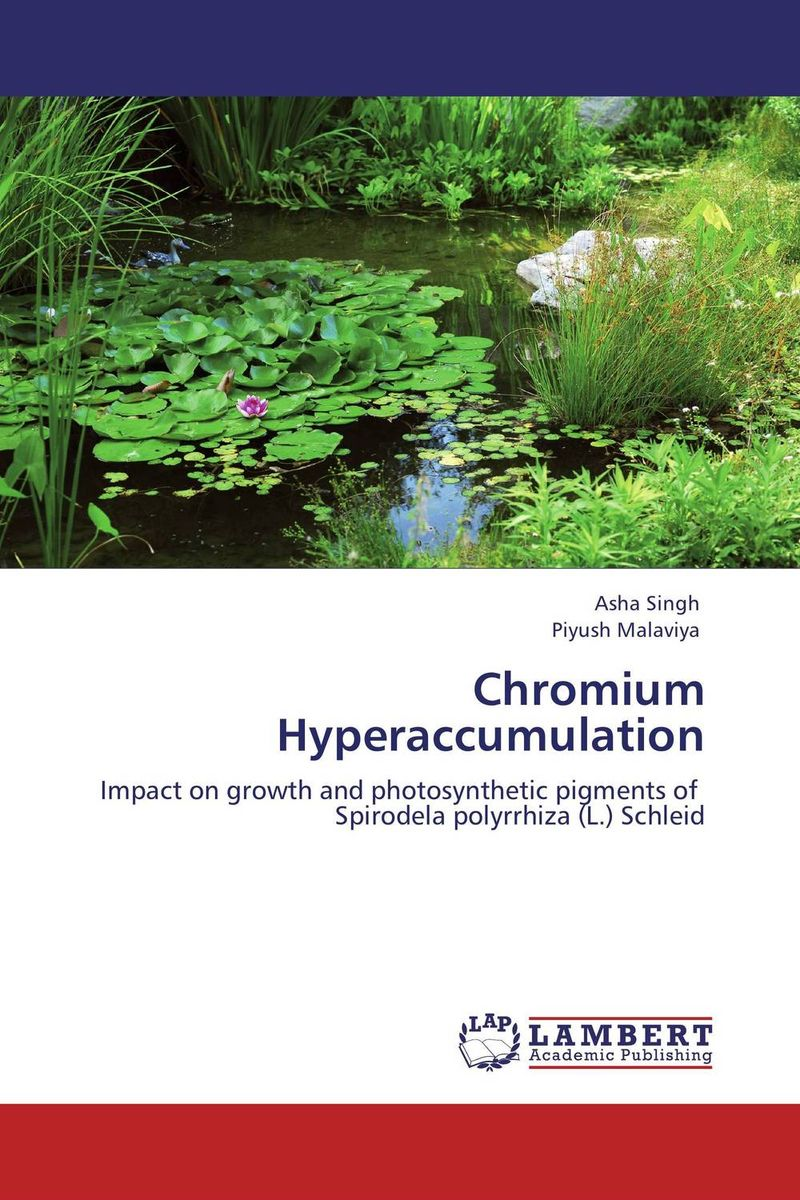 Chromium Hyperaccumulation arcade ndoricimpa inflation output growth and their uncertainties in south africa empirical evidence from an asymmetric multivariate garch m model