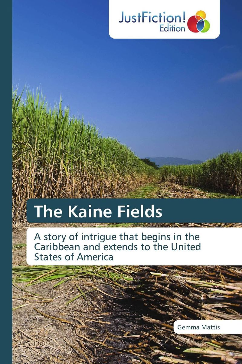 The Kaine Fields economic methodology