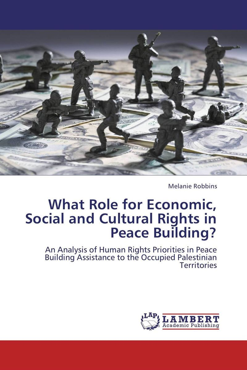 What Role for Economic, Social and Cultural Rights in Peace Building? foreign aid and social sector of pakistan