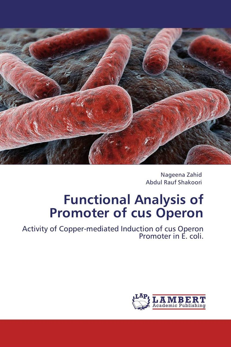 Functional Analysis of Promoter of cus Operon analysis of tp53 and promoter hypermethylation of mgmt in lung cancer