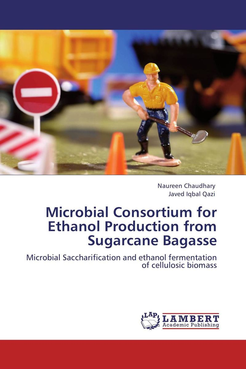 Microbial Consortium for Ethanol Production from Sugarcane Bagasse thermo operated water valves can be used in food processing equipments biomass boilers and hydraulic systems
