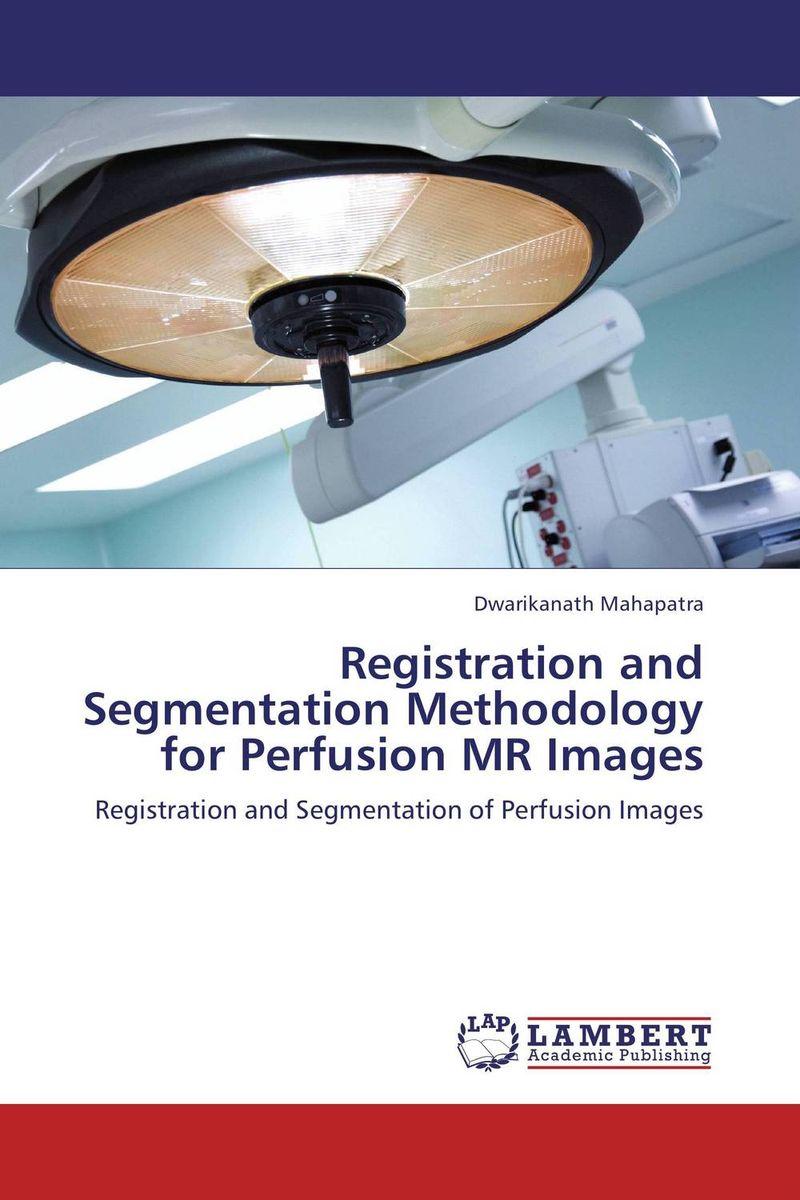 купить Registration and Segmentation Methodology for Perfusion MR Images недорого