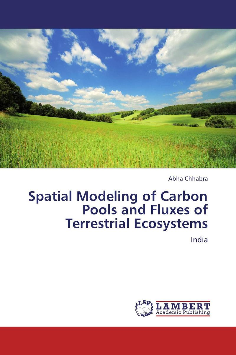 Spatial Modeling of Carbon Pools and Fluxes of Terrestrial Ecosystems the portrait of a lady 2e nce