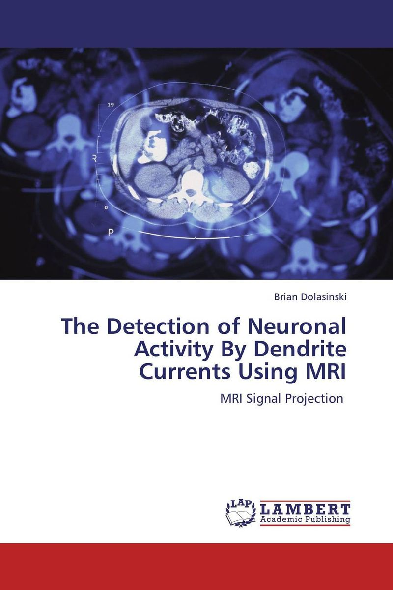 купить The Detection of Neuronal Activity By Dendrite Currents Using MRI недорого