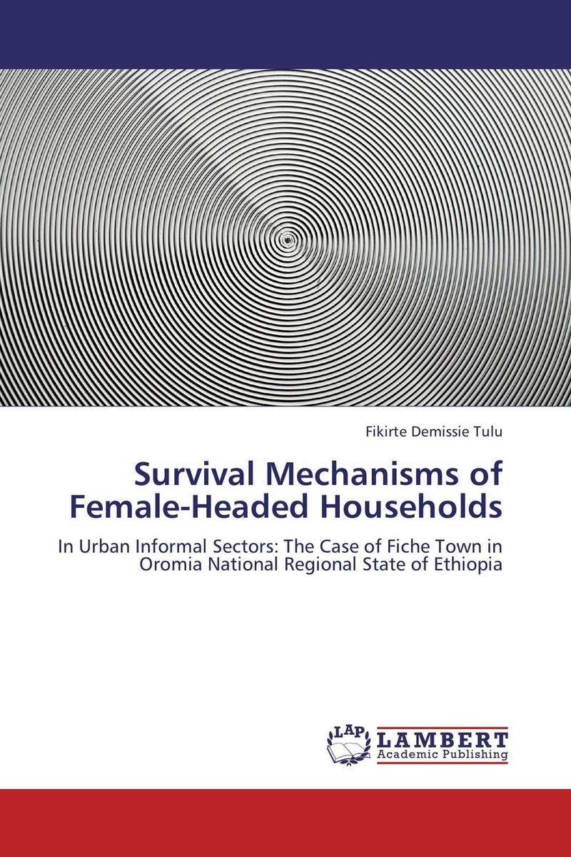 Survival Mechanisms of Female-Headed Households integrating the informal sector in urban plans