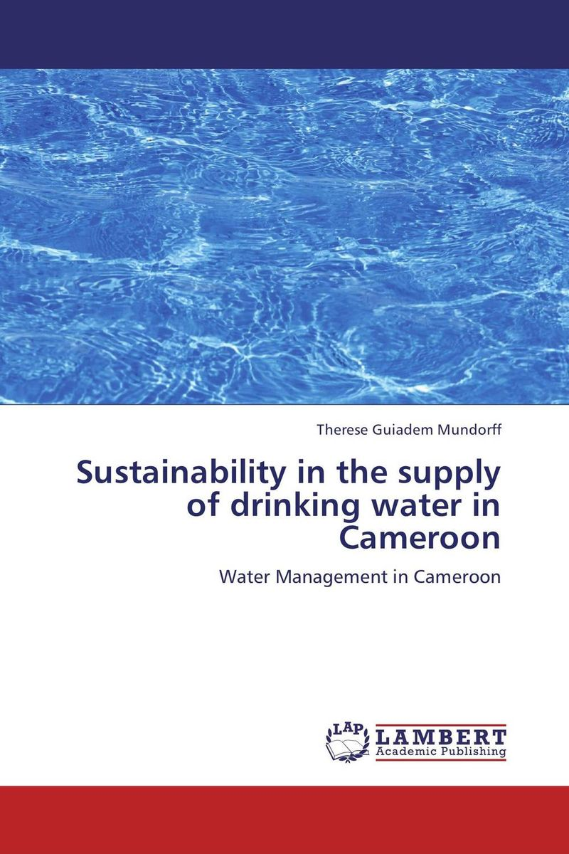 Sustainability in the supply of drinking water in Cameroon bride of the water god v 3