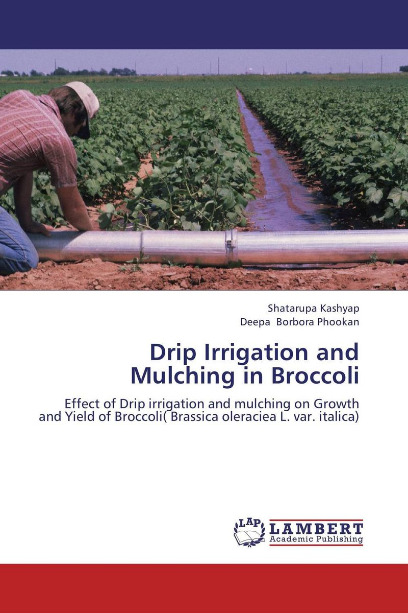 Drip Irrigation and Mulching in Broccoli evaluation of stage wise deficit furrow irrigation
